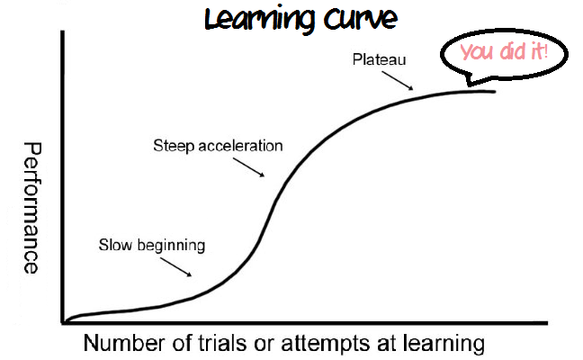 learning and experience curve