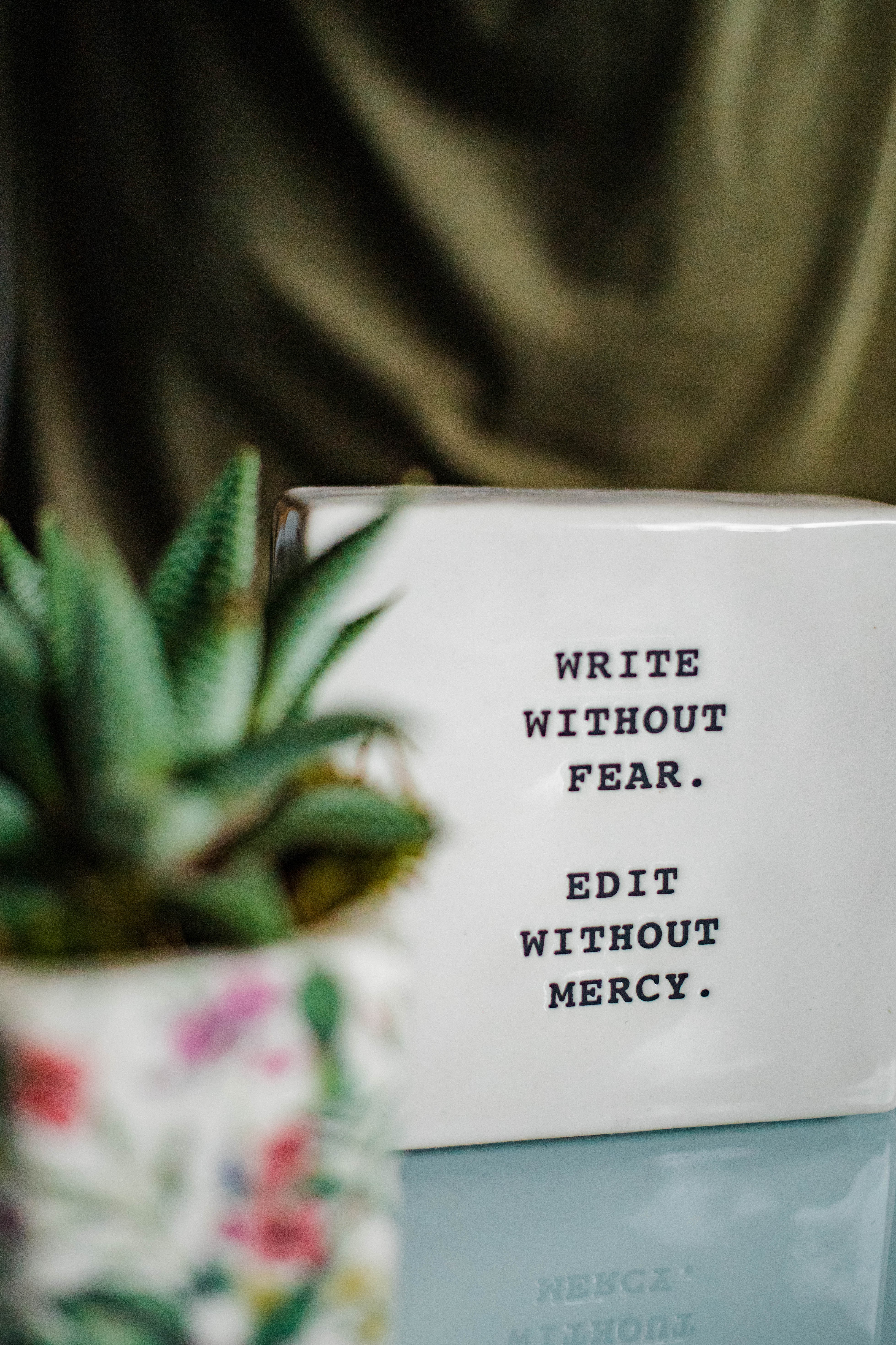 Poster with the words Write without Fear, Edit without Mercy written on it