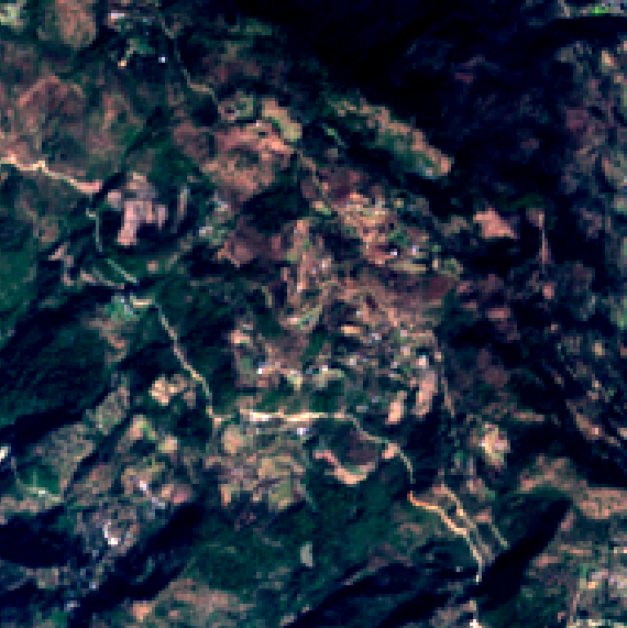 Crop fields satellite images (up: rice, bottom: wheat) at 100m zoom level - Source: Omdena