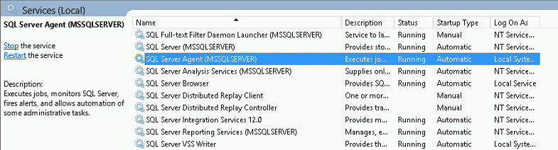 SQL Server Agent Could Not Execute Jobs Containing