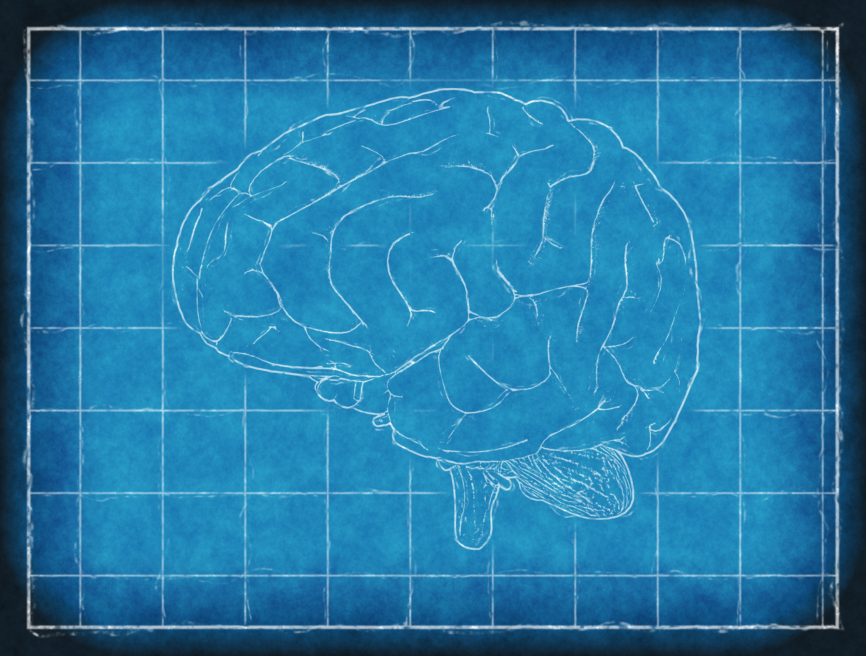 Merging with AI: How to Make a Brain-Computer Interface to