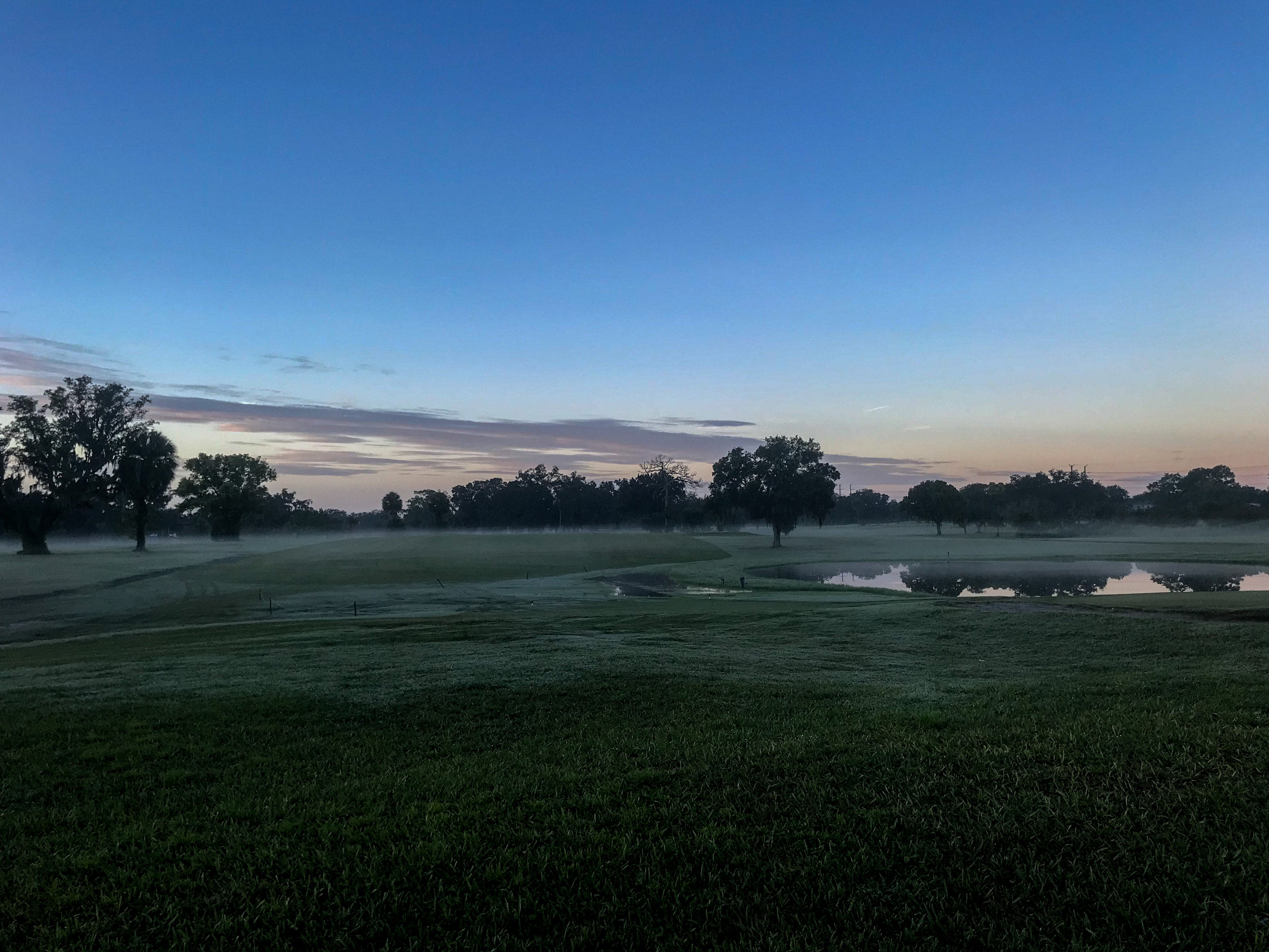 Misty golf course with dotted trees, mostly dark blue sky with orange coming up from the horizon