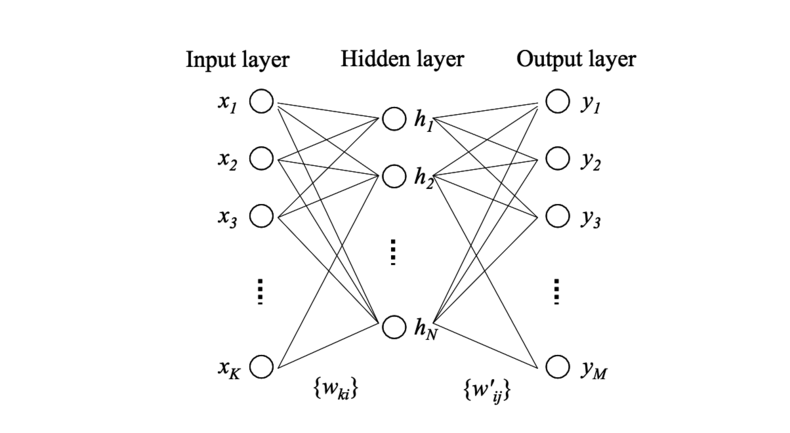 Forward Propagation: Building a Skip-Gram Net From the Ground Up
