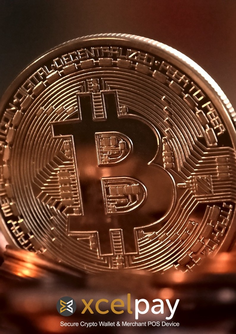Cryptocurrency pictures of wedding bet on both sides and win