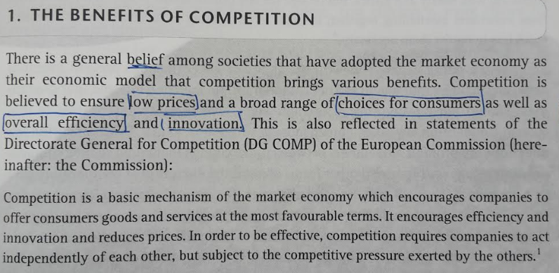 Competition Law Reflection Paper Clemens Kaupa Medium