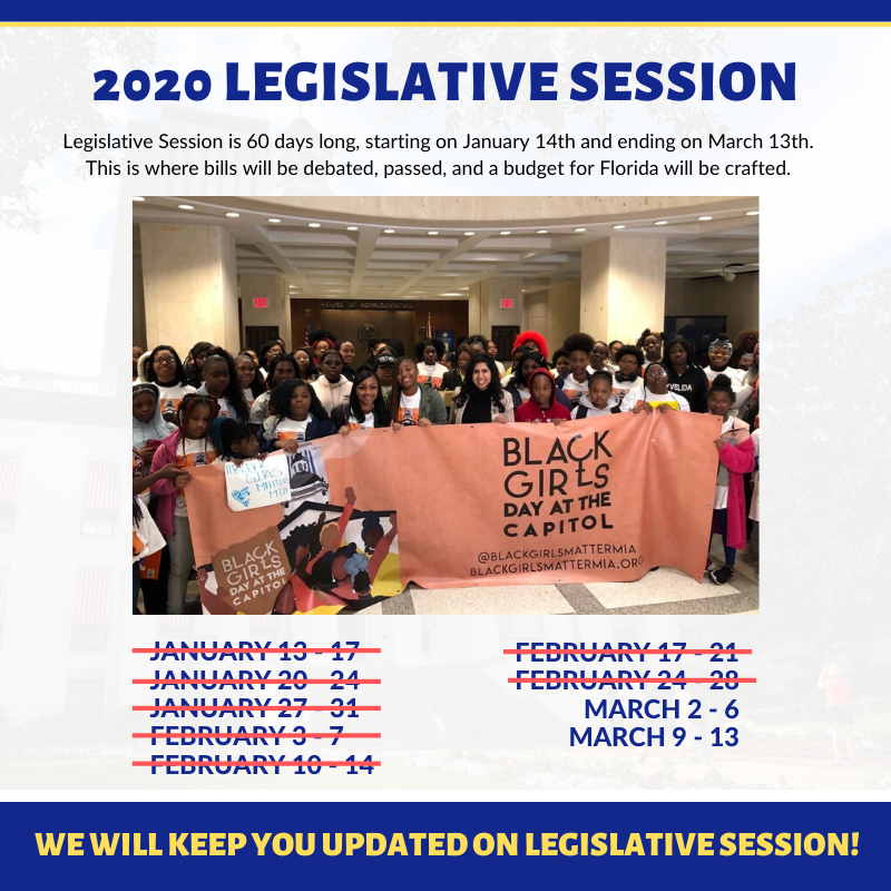 Your Official 2020 Legislative Update: Week 7 | by Anna V. Eskamani | Medium