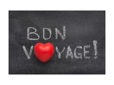 The words bon voyage with the o in voyage as a red heart time for senior travel.