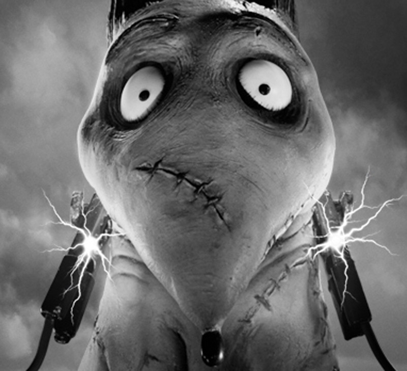 Script Analysis Frankenweenie Part 5 Takeaways By Scott Myers Go Into The Story