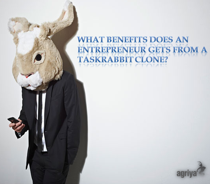 Thumbnail for What Benefits Does An Entrepreneur Gets From A Taskrabbit Clone?