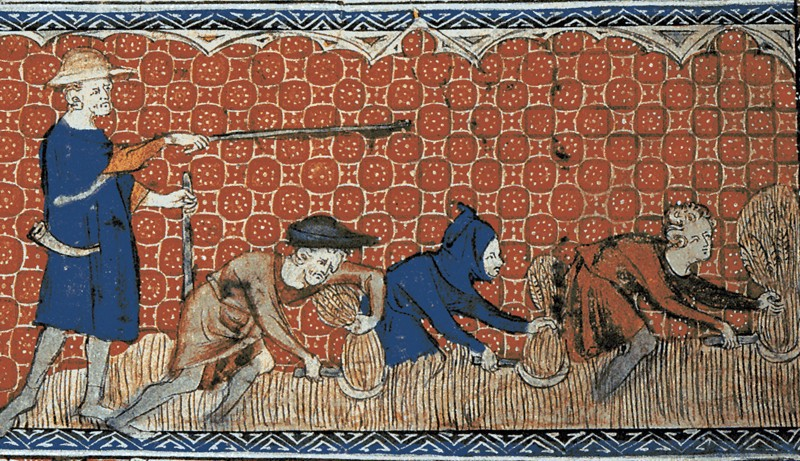 What Your Day Would Look Like If You Were a Medieval Peasant