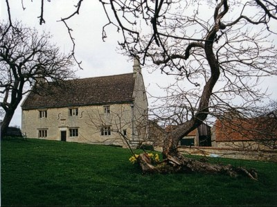 An image of the famous apple tree.