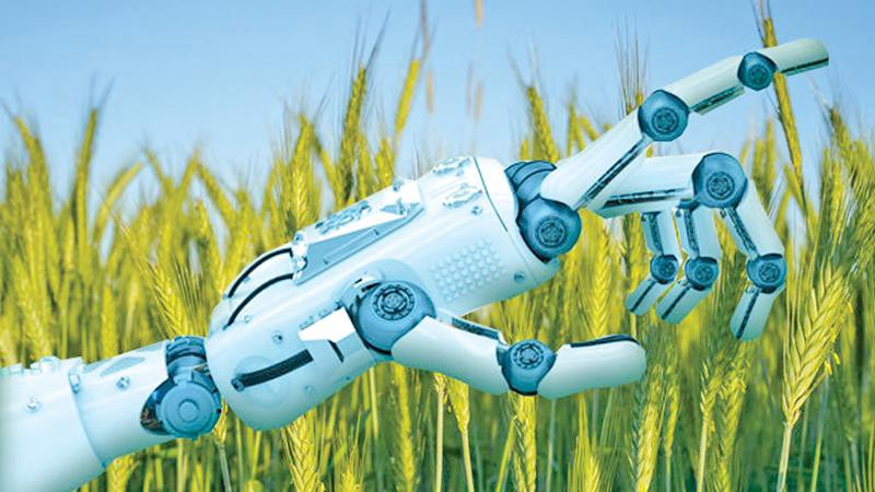How can I start with AI in agriculture?