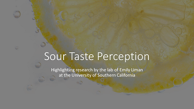 Sour taste perception video highlighting the research of the Liman Lab at the University of Southern California