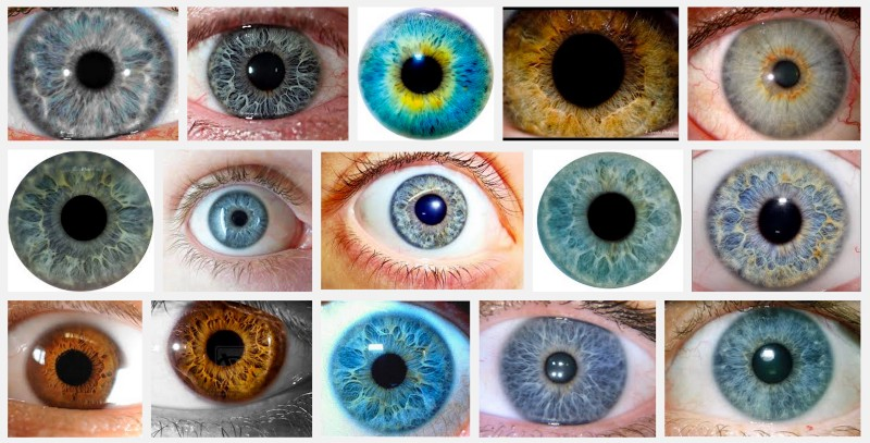 Structural Eye Color Is Amazing  Medium-5669