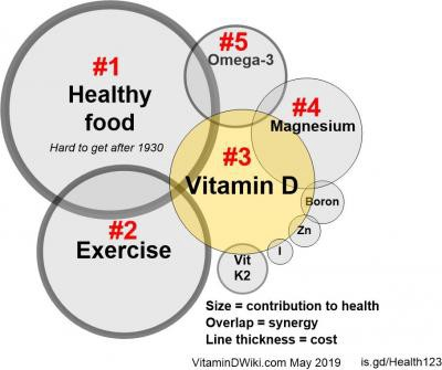Perspective of the importance of Vit D and co-factors to health