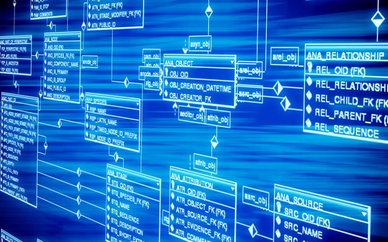 The 4 Phases That Create Database Design By Deeplogica Medium