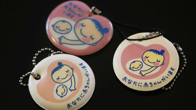Human Fetus in the Womb Pregnancy Keychain