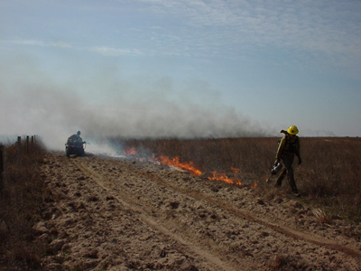 two firefighters implementing a prescribed burn on the prairie
