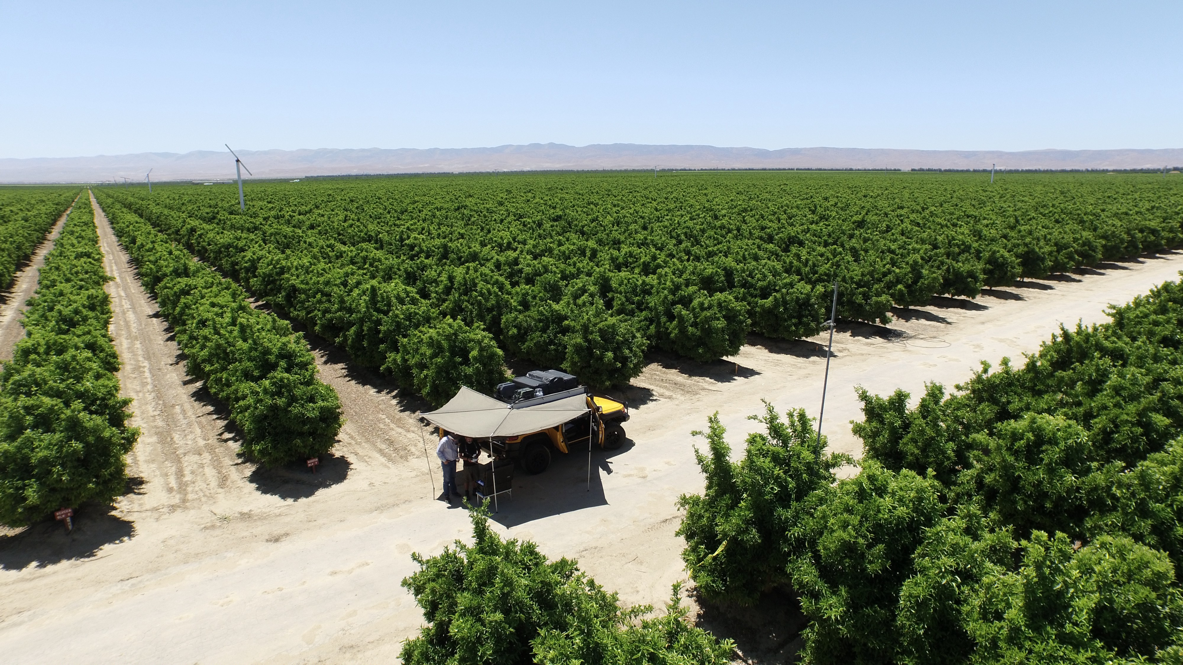 Drone Maps Diagnose Crop Problems, Demonstrate Test Results