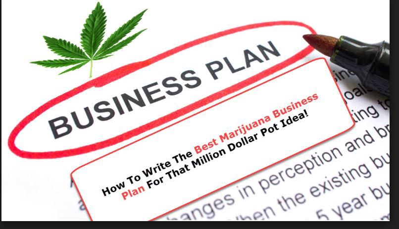 I Will Write Your Cbd Business Plan And Marketing Plan