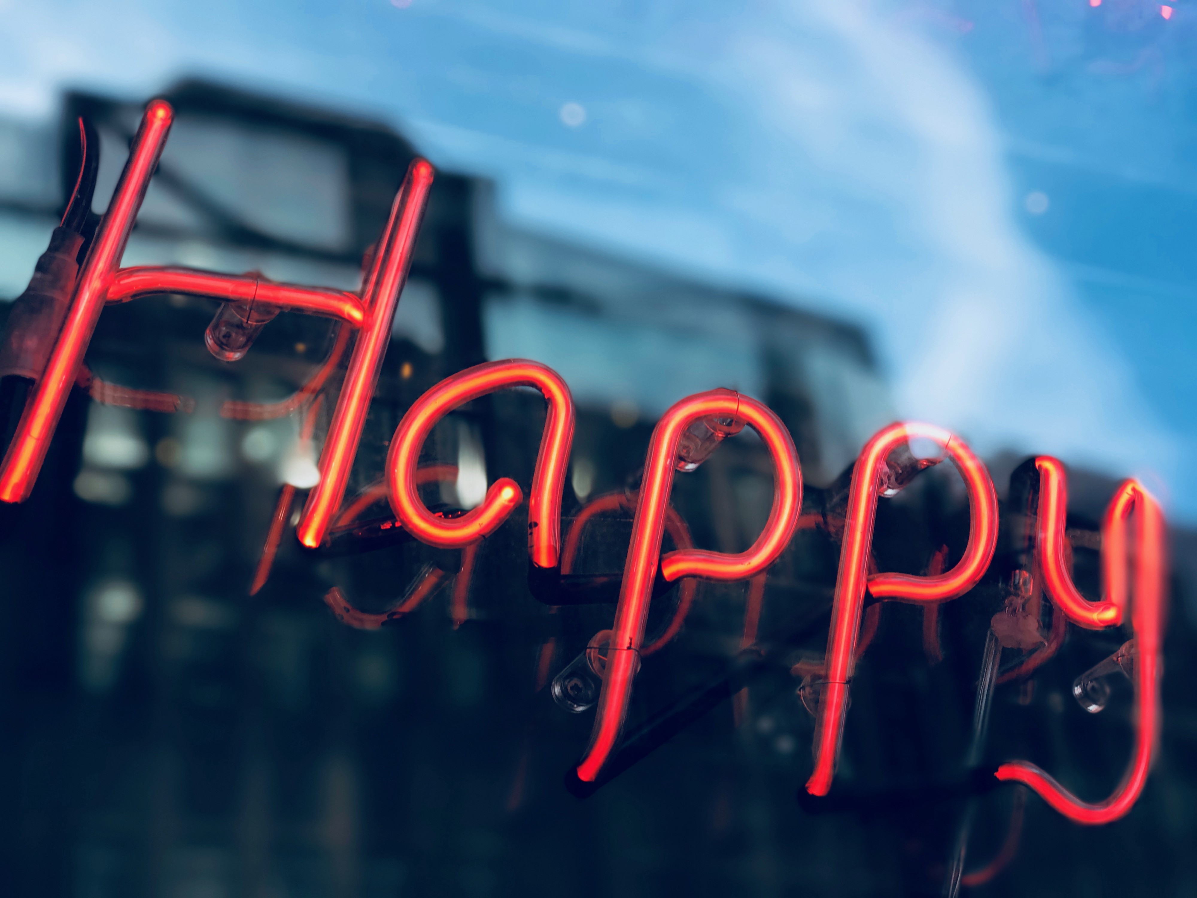 Electric lights in red that spell happy.