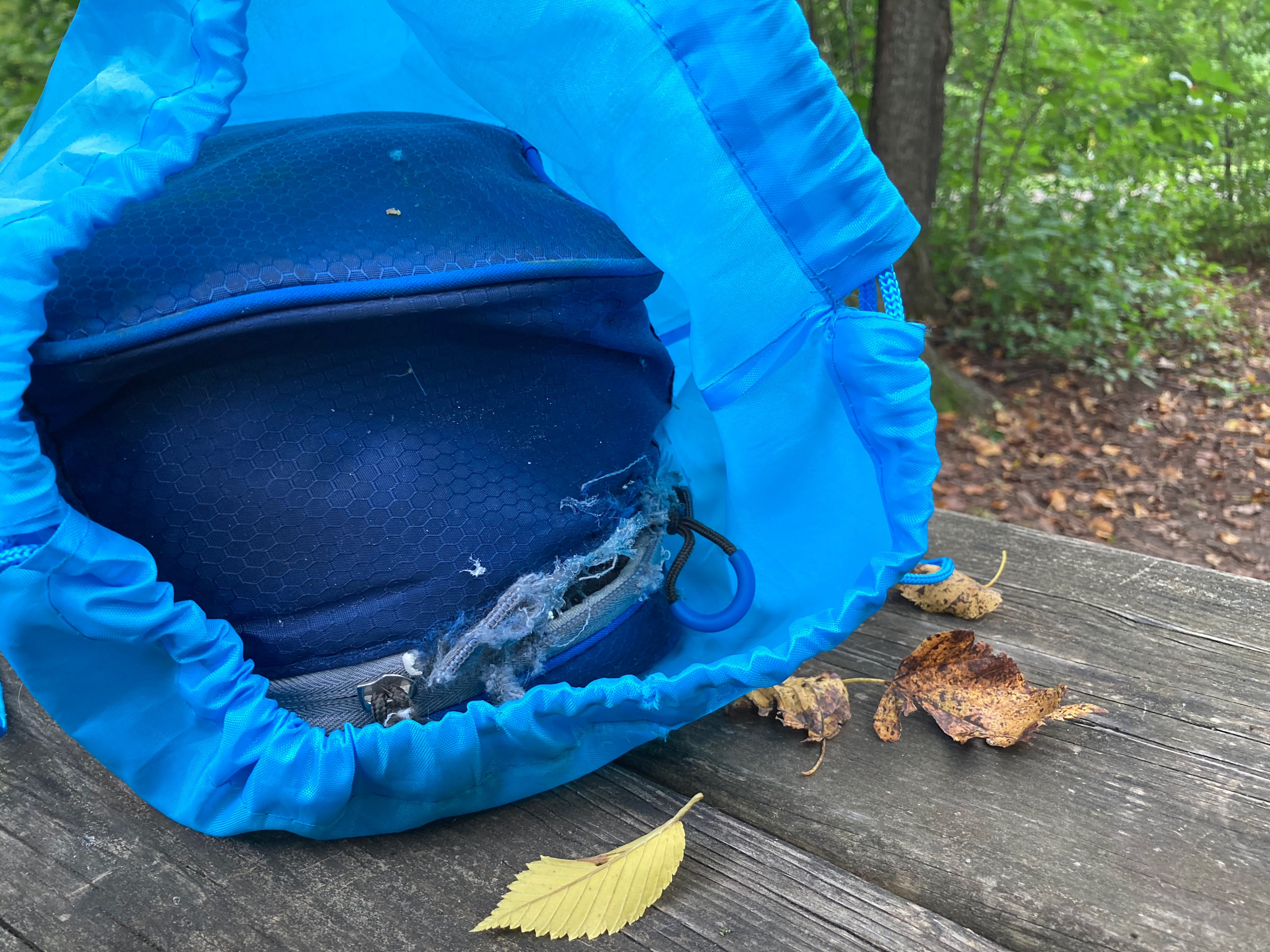 My lunch bag, infiltrated by squirrels, enclosed in a baby blue bag.