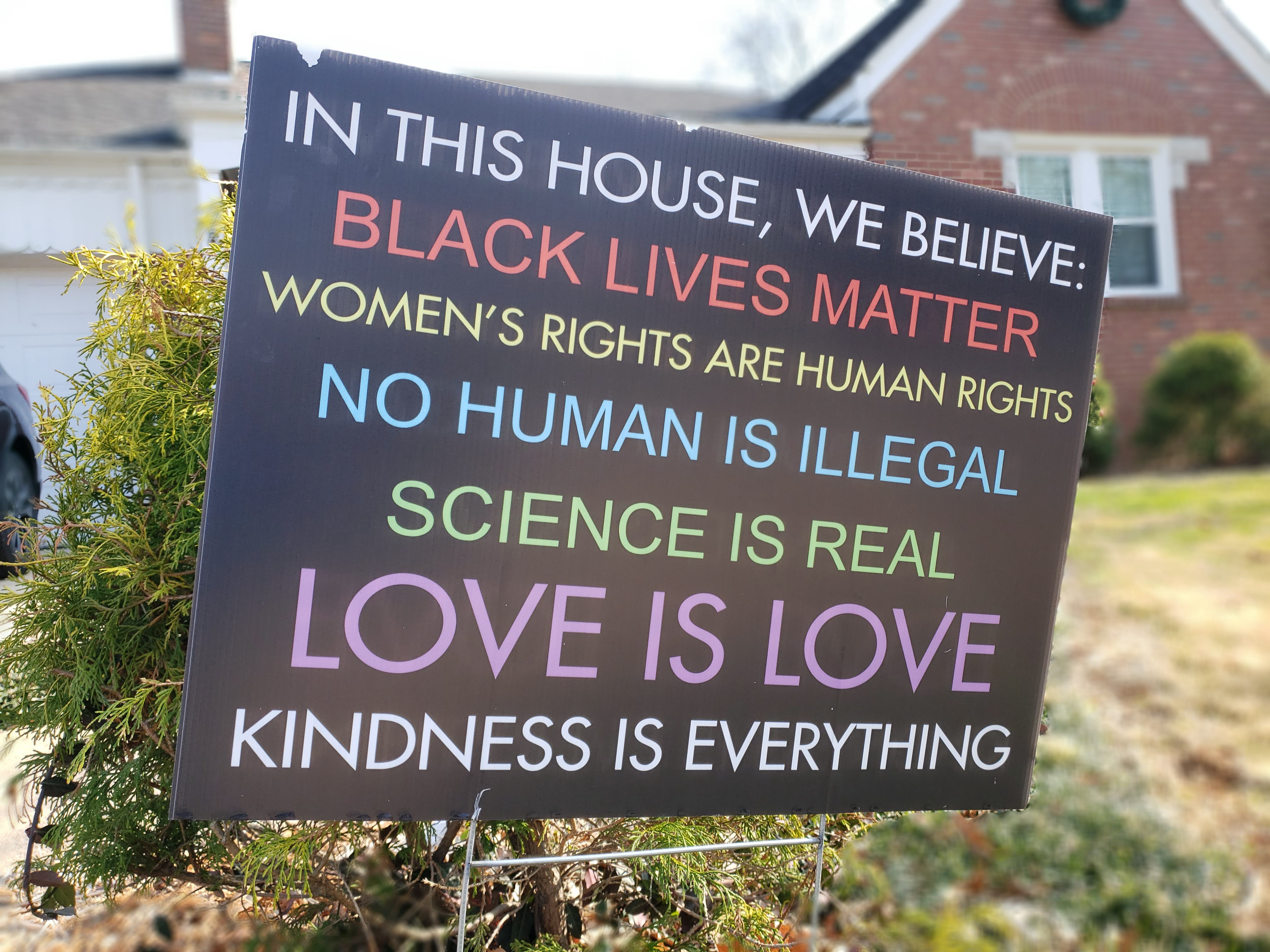 Photo of a black yard sign with colorful progressive believes stated.