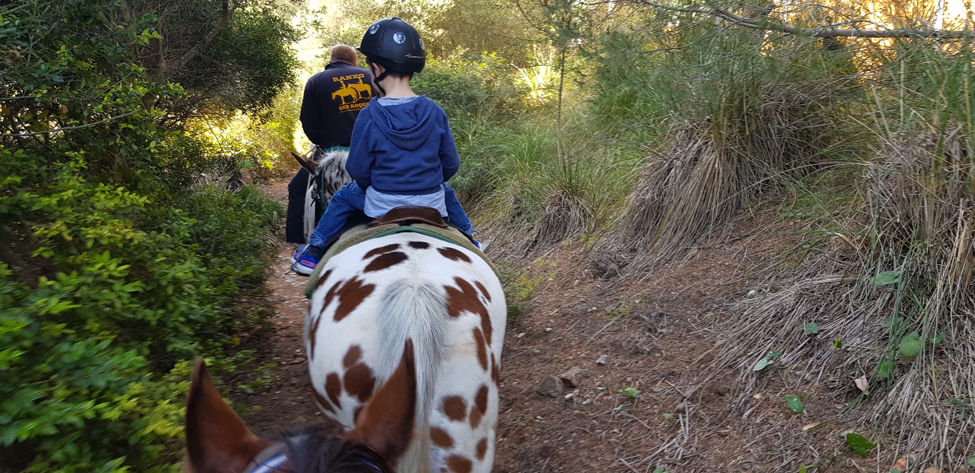 A grown-up and a child riding on horses through some woods.