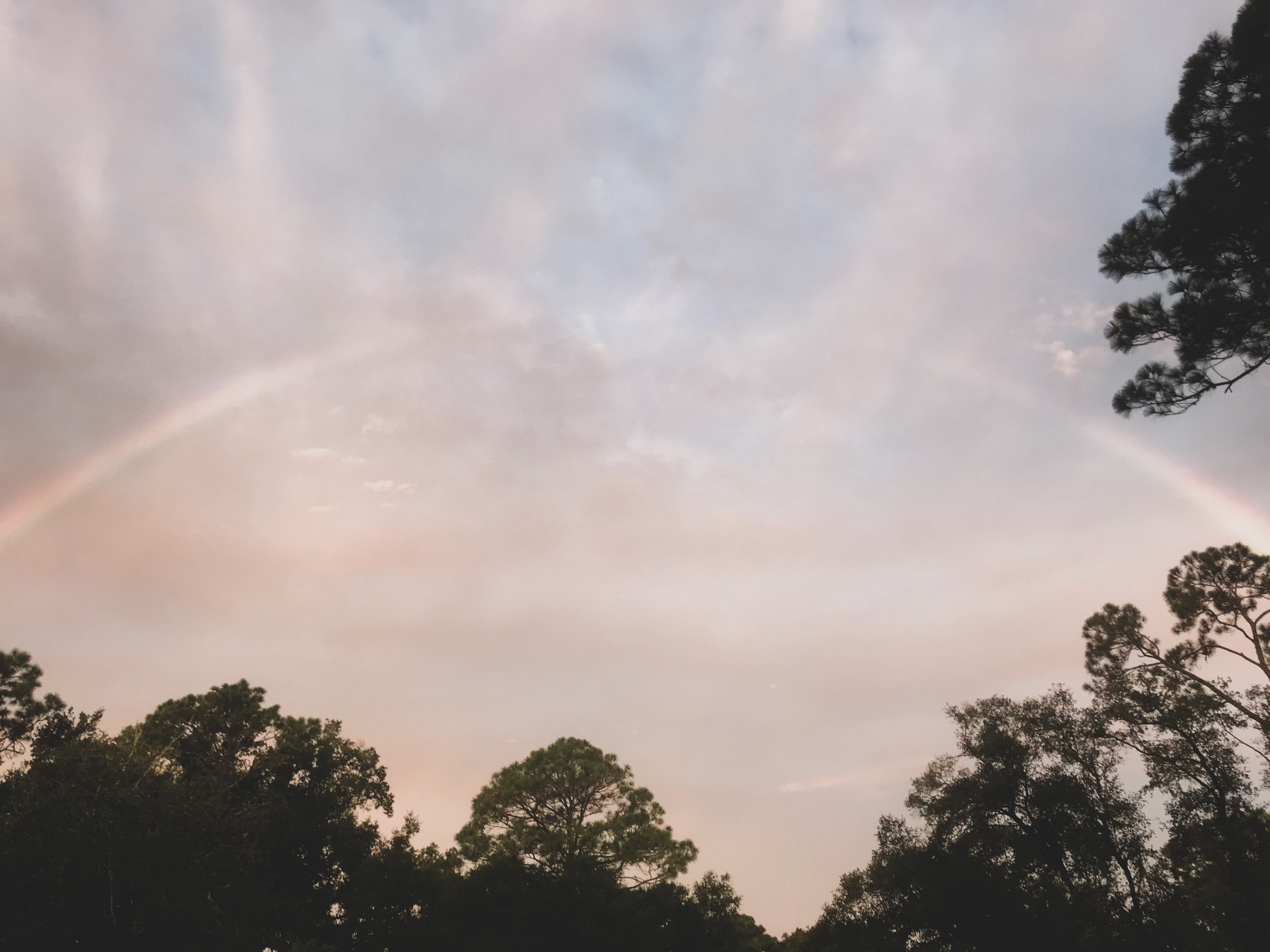 A rainbow with a faded middle in a dusty pink sky