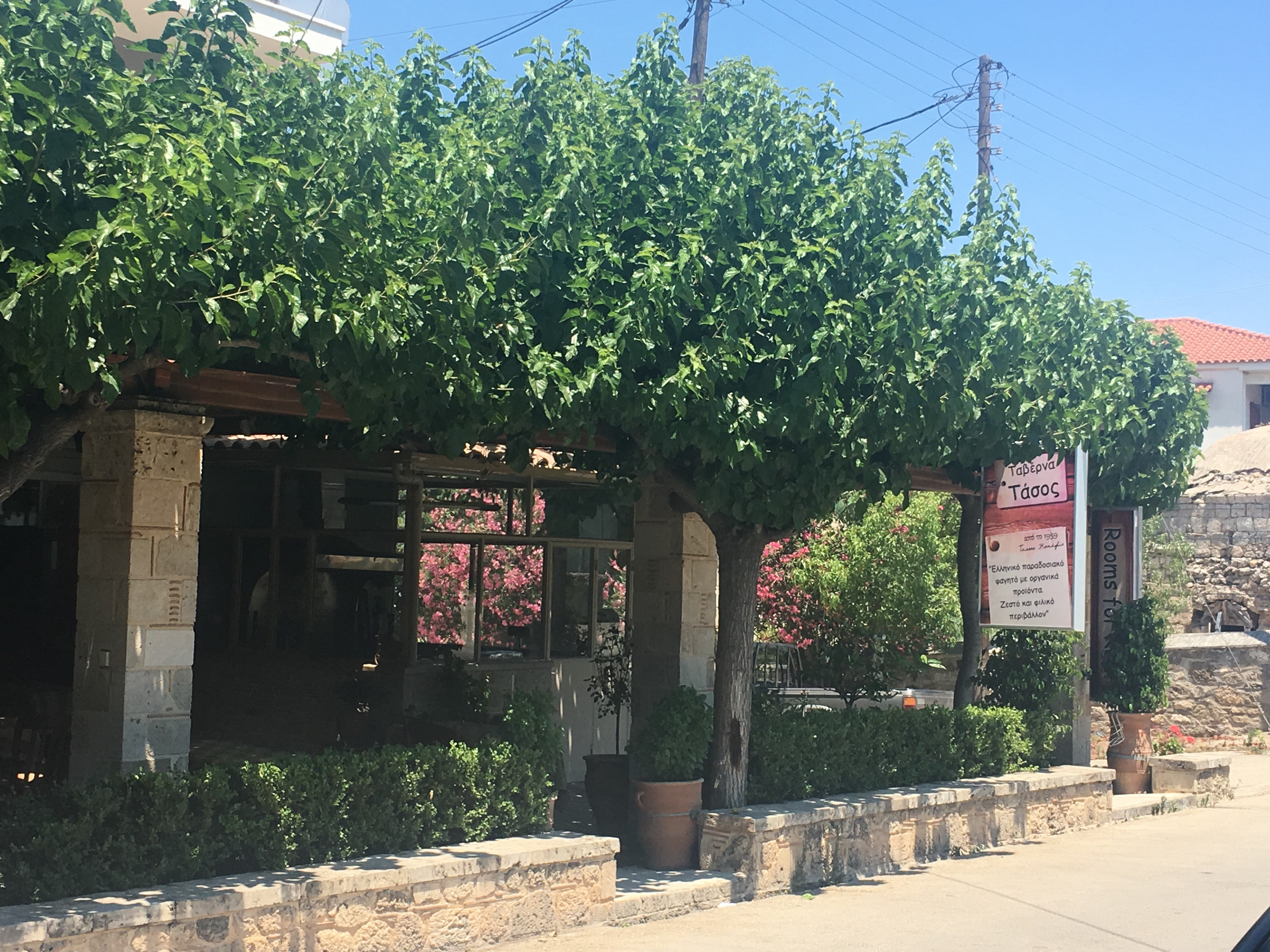 A street view of the taverna that might or might not be Tasso's
