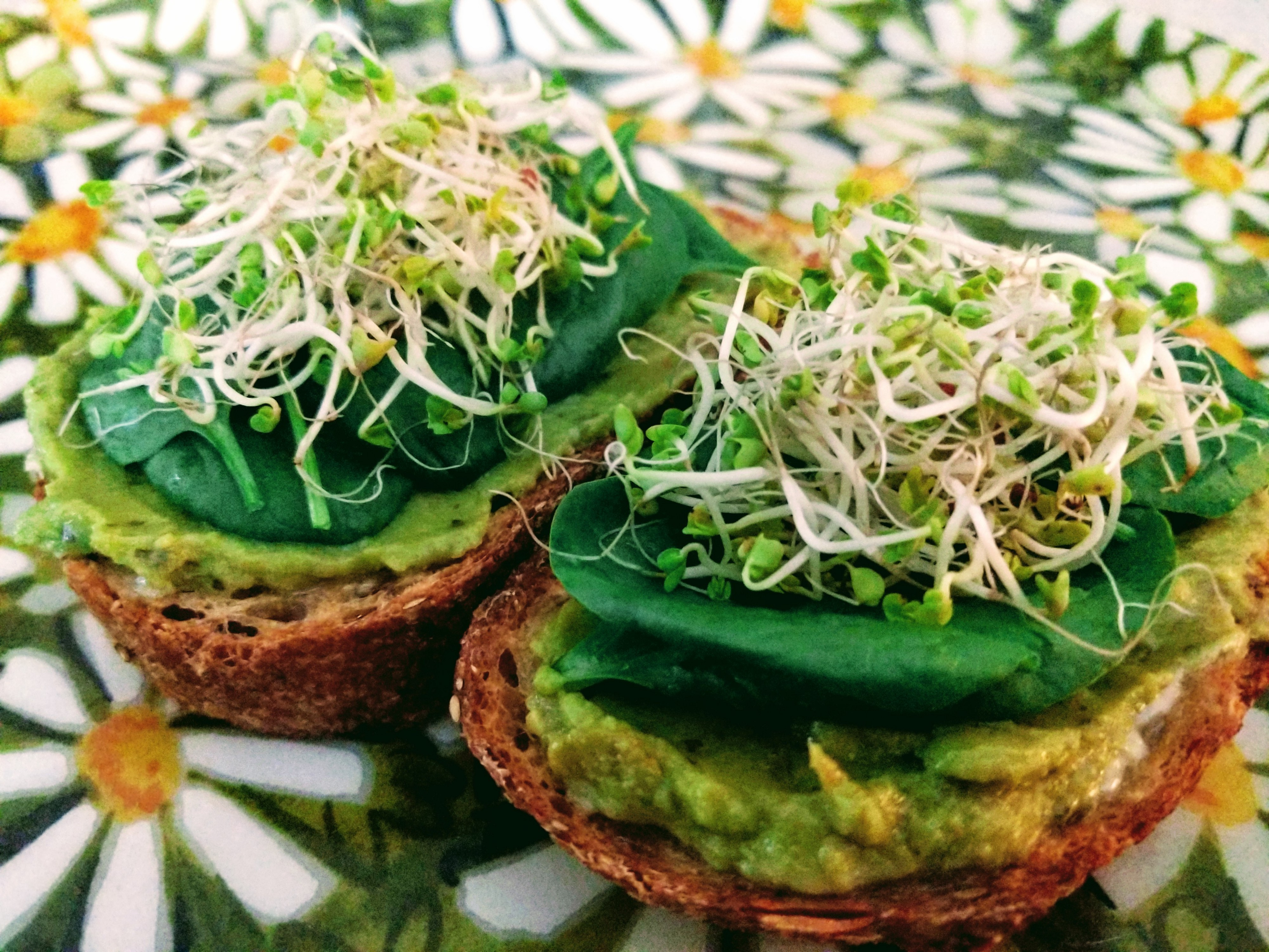 Avocado toast topped with fresh spinach and sprouts on a flowered food tray.