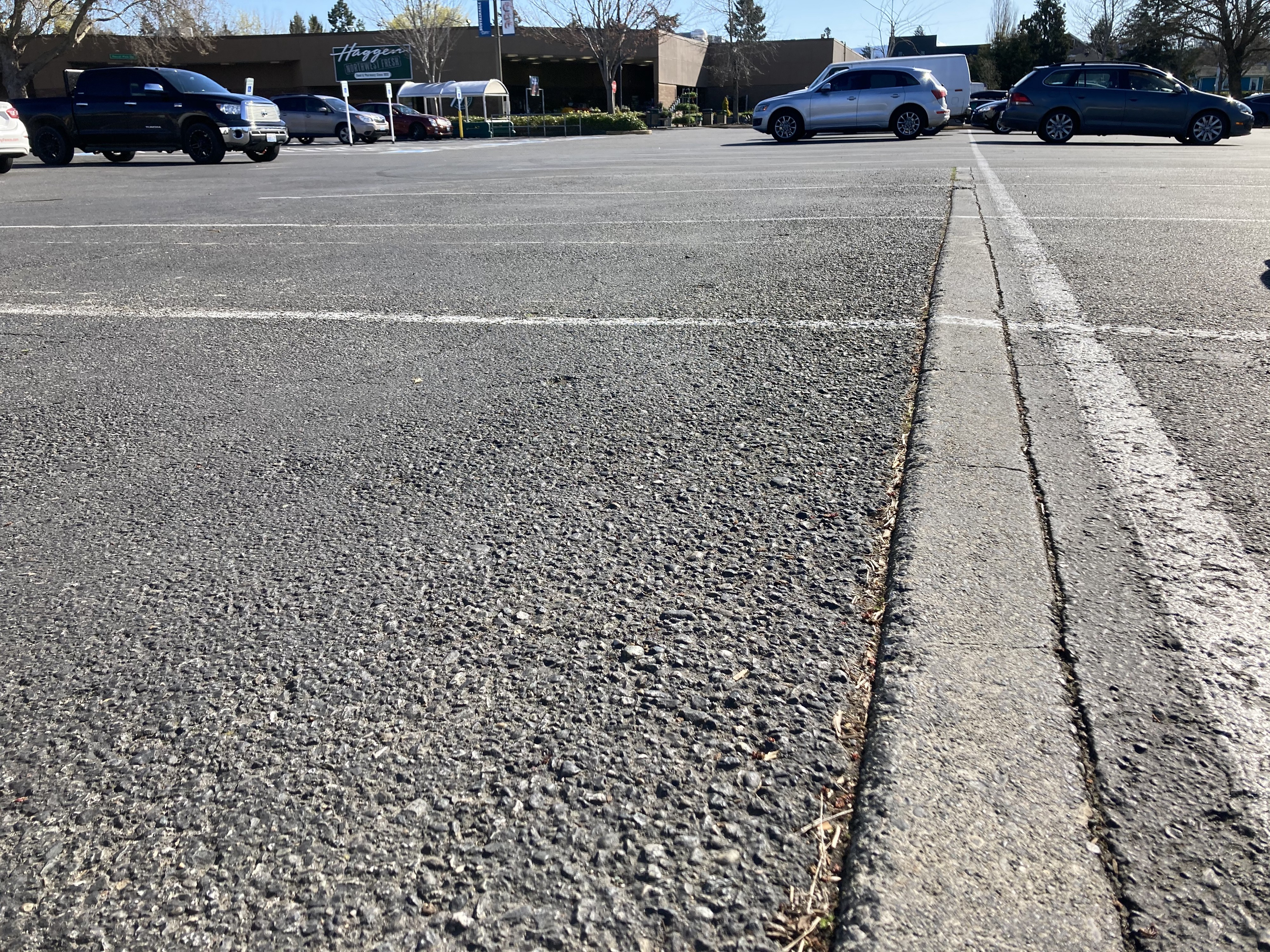 Close up of a strip of concrete in the asphalt parking lot with newer store in the background
