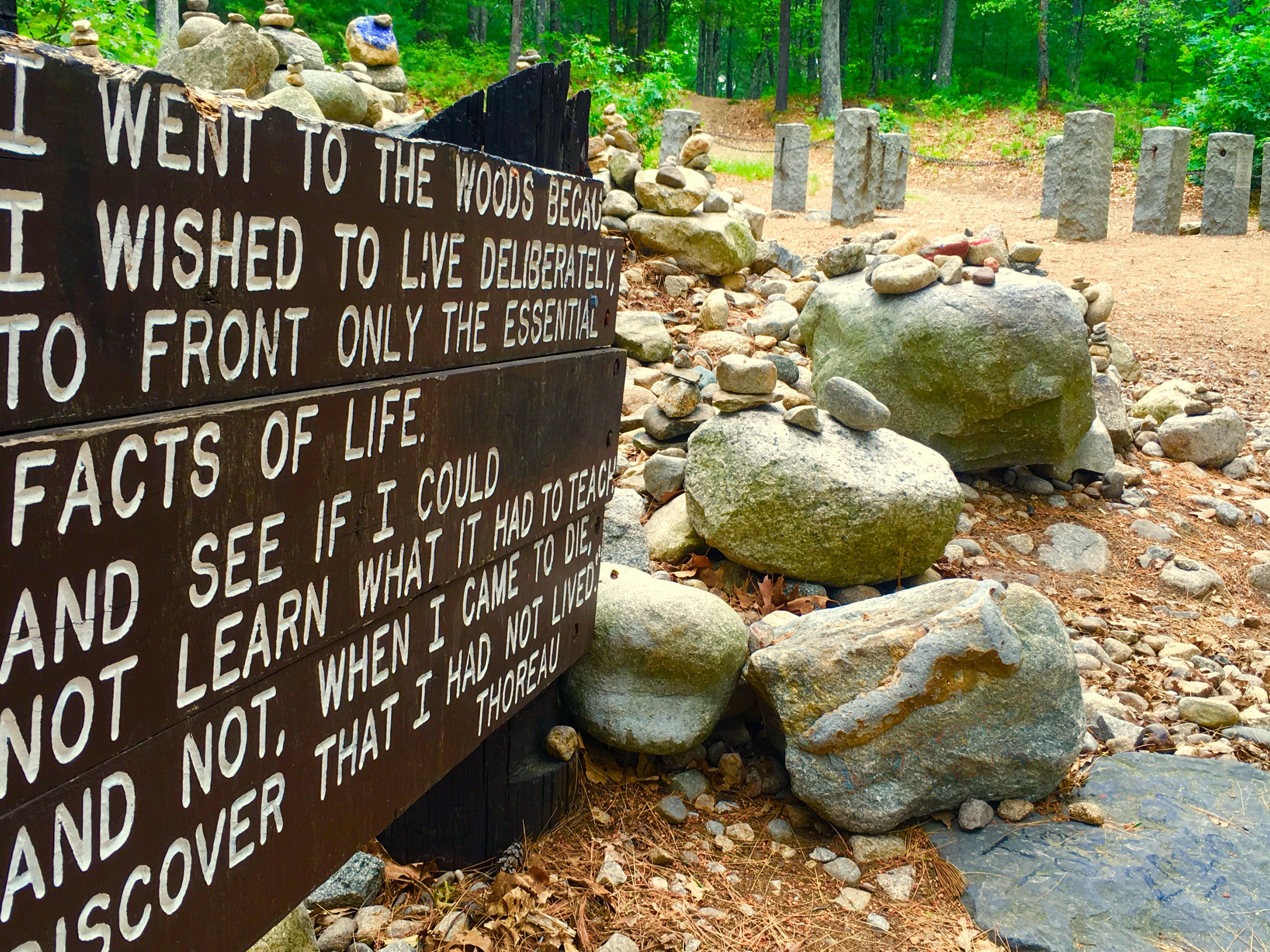 The site where Thoreau lived on Walden Pond