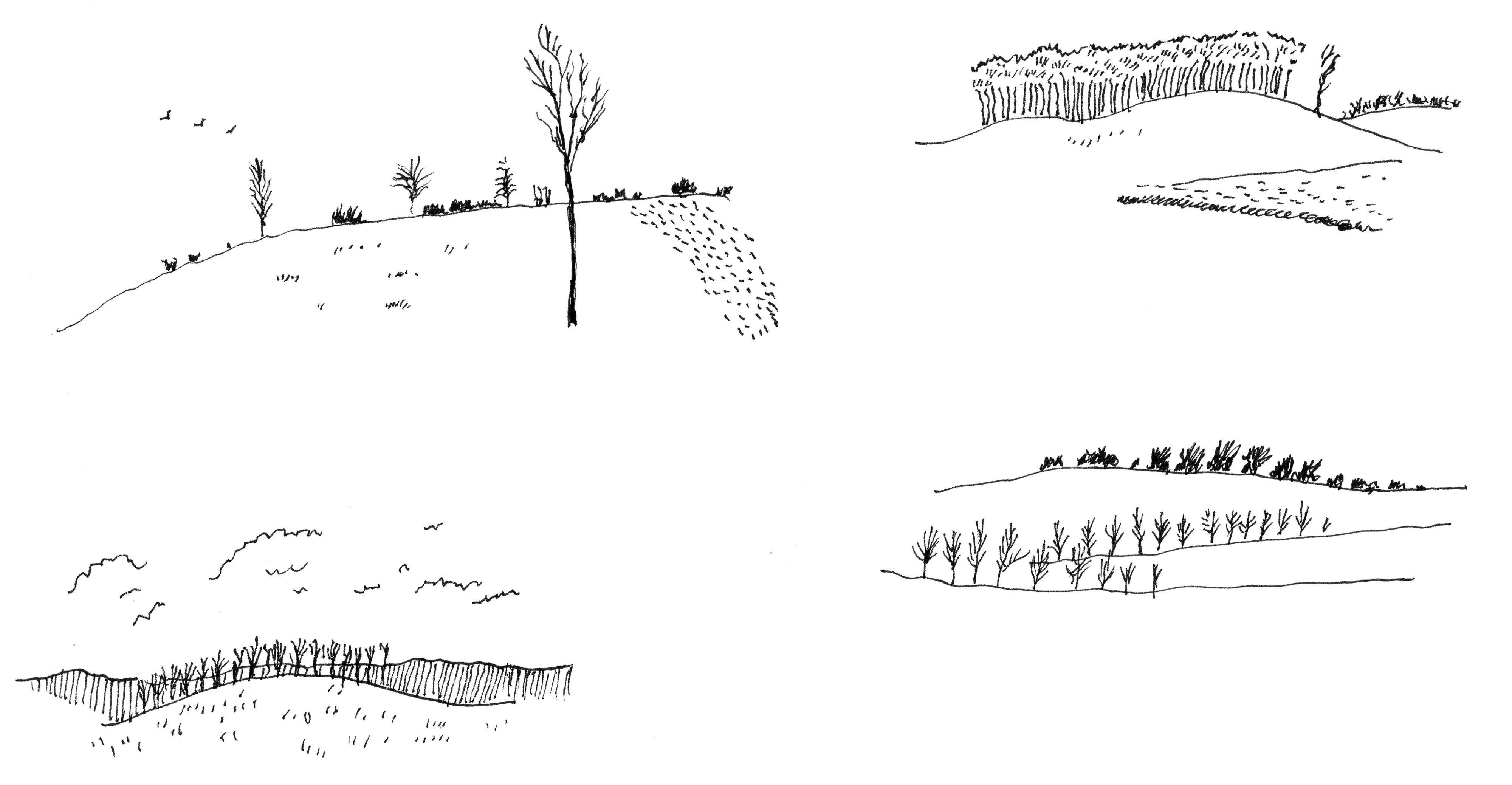 A series of sketches of the English countryside