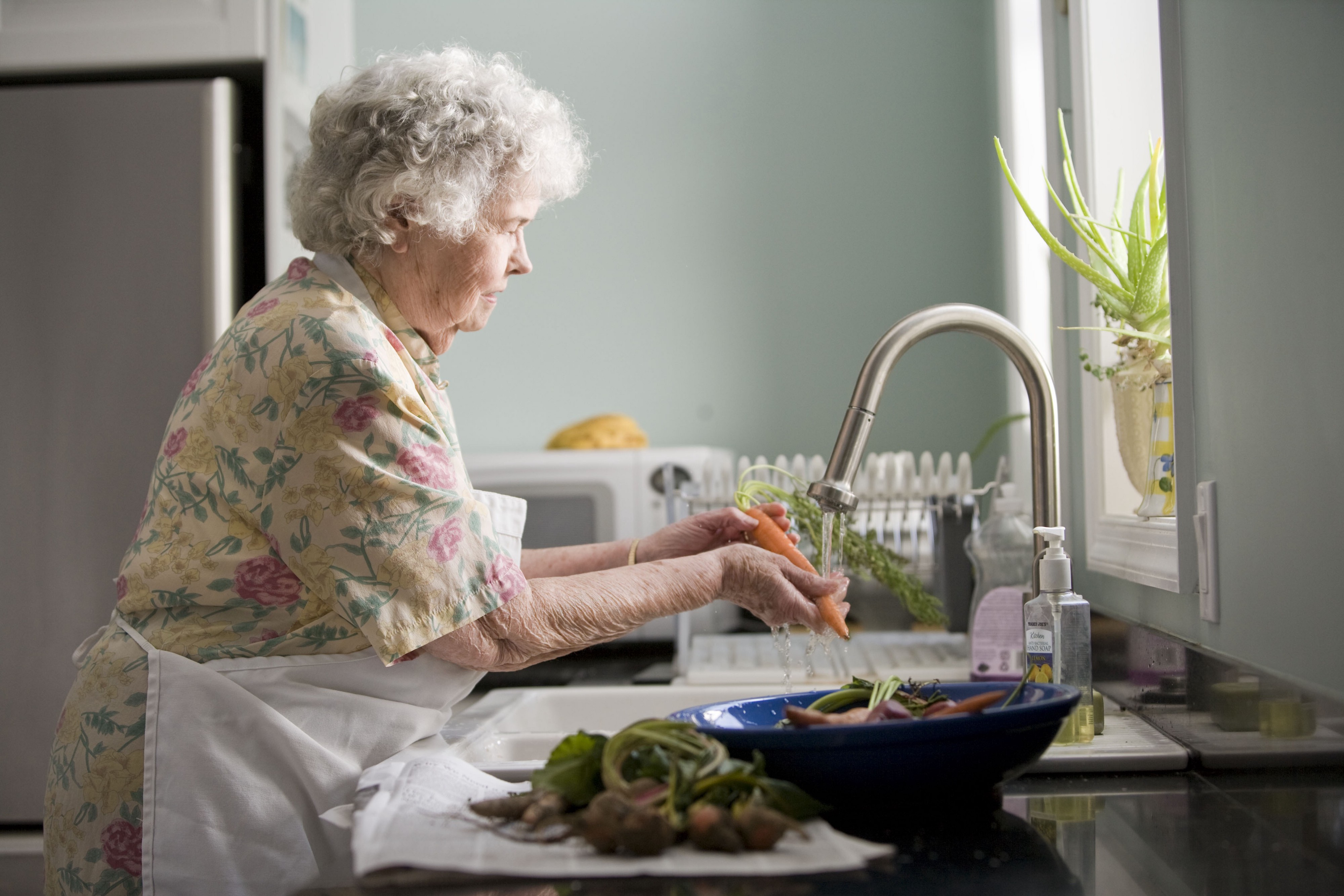 Image of a matronly grandmother in a white apron washing vegetables at her clean sink.