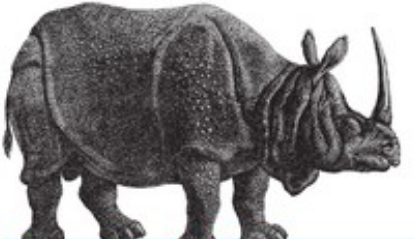 A black and white hand-drawn rhinoceros