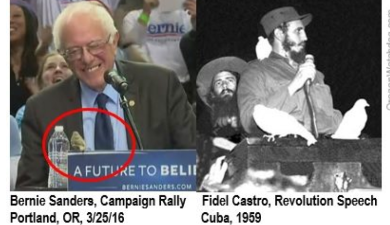 Bernie's Portland bird moment similar to Castro's