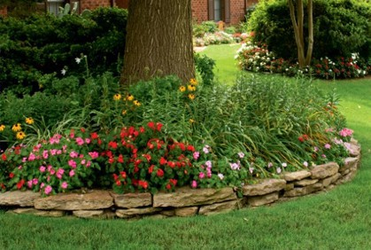 What To Grow And How To Landscape Shady Spaces Oci Landscaping