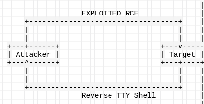 Spawning interactive reverse shells with TTY - 6c2e6e2e - Medium