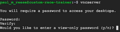 Terminal showing VNC Server password creation, and offering the option of a view-only password