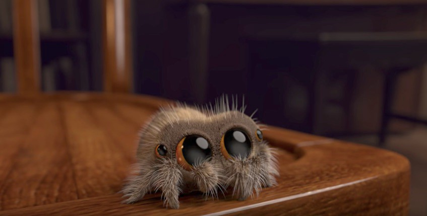 The Real Lucas The Spider - melissa mcewen - Medium