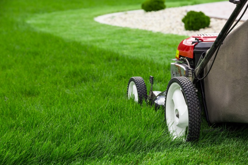 The Benefits of Outsourcing Lawn Care Services|Advantages of Hiring A  Professional Lawn Care Service|Practical Gains of Contracting Lawn Care  Services | by campbell jason | Medium