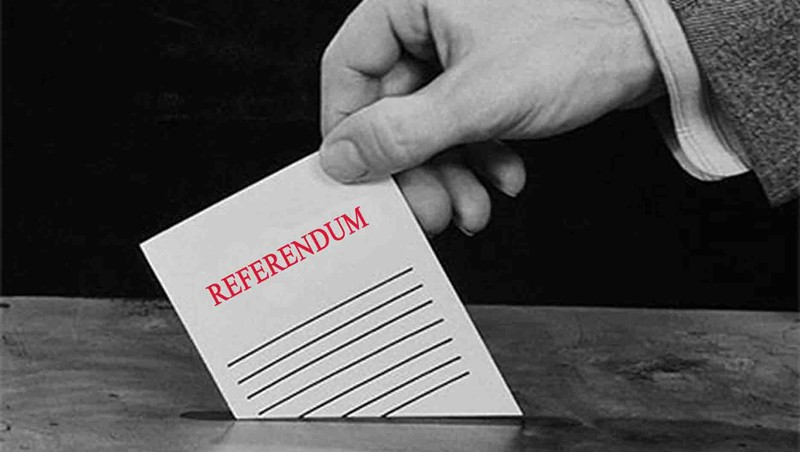 Image result for referendum