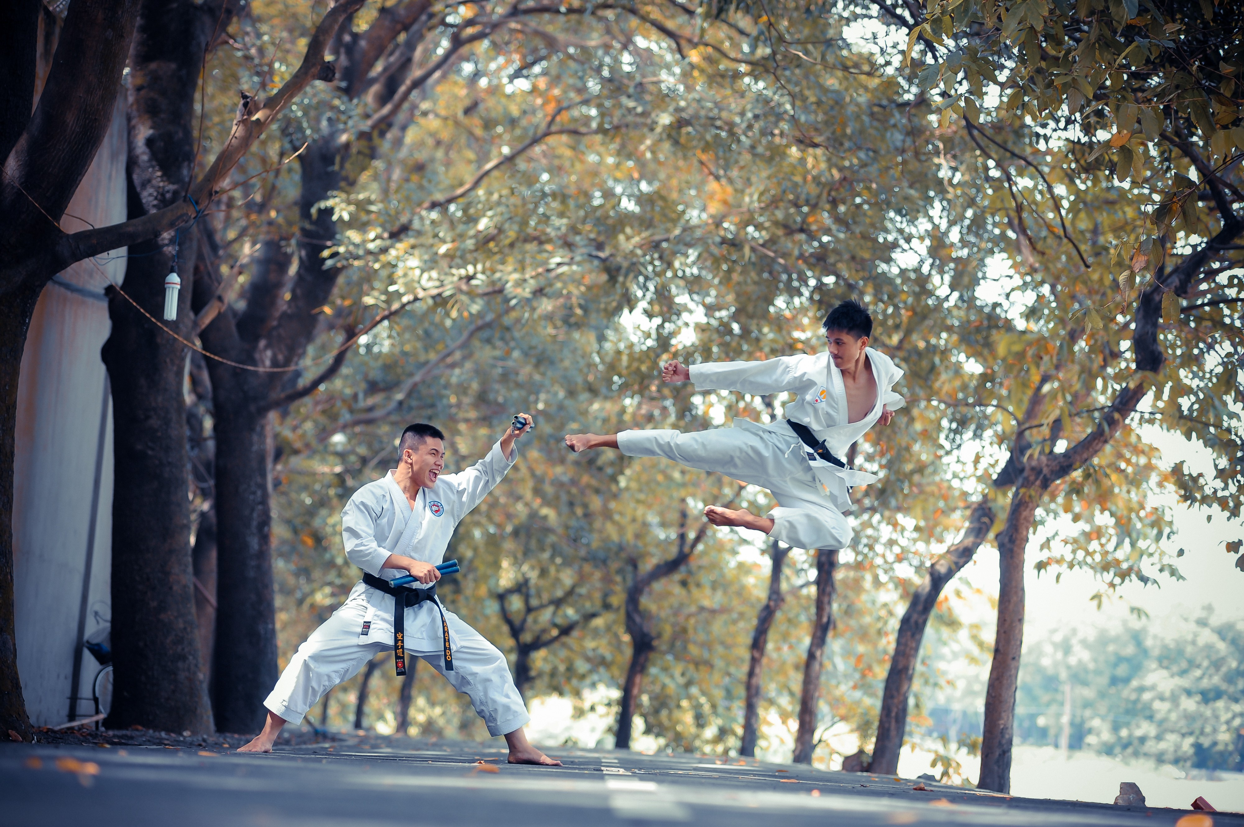 two guys karate fighting in the woods.