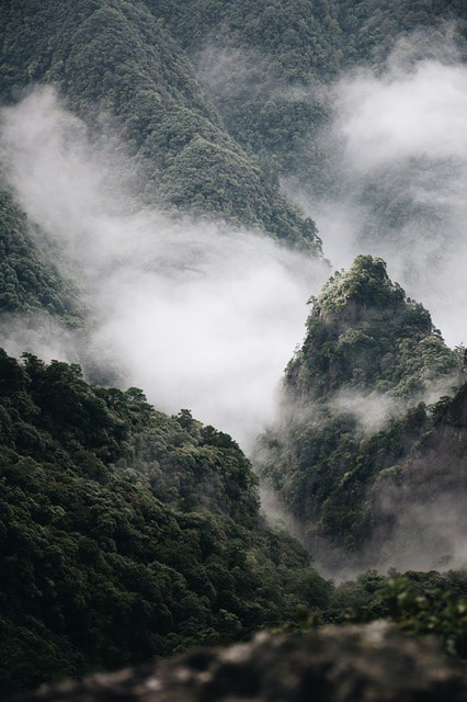 [Foggy mountains]