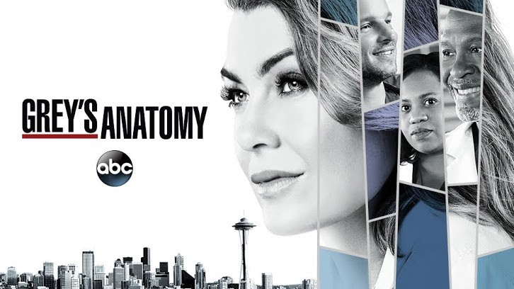 Greys Anatomy 14x22 Fight For Your Mind Season 14 Episode 22