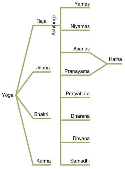 Image of Yoga hierarchy