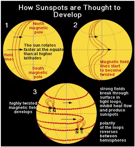 A diagram showing how magnetic fields stretch around the Sun.