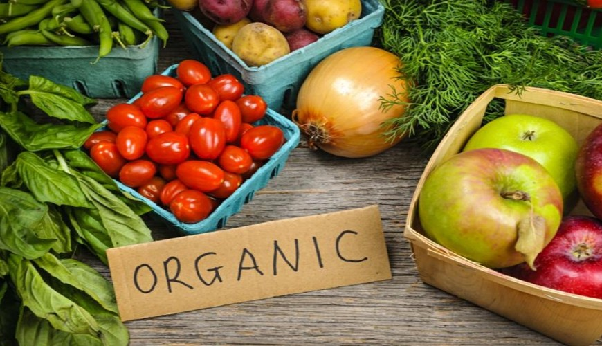 Organic Foods: Know What They Are And Their Main Benefits
