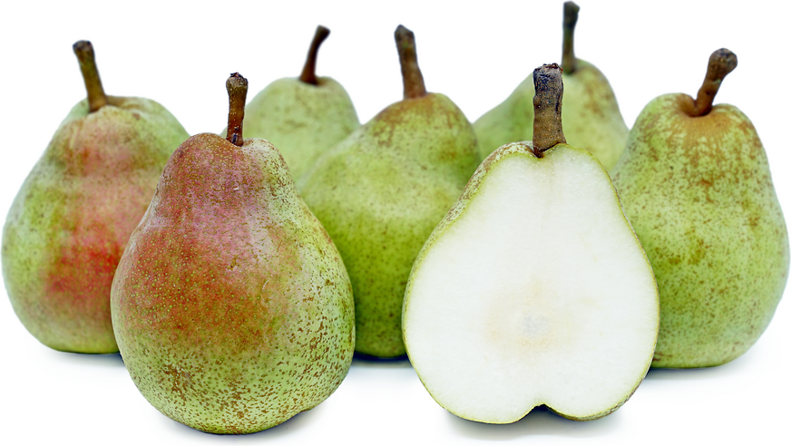 Christmas Pears.Comice Vs Barlett Pears Which One To Choose
